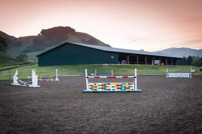 Bay Area Equestrian Network - Show business listings