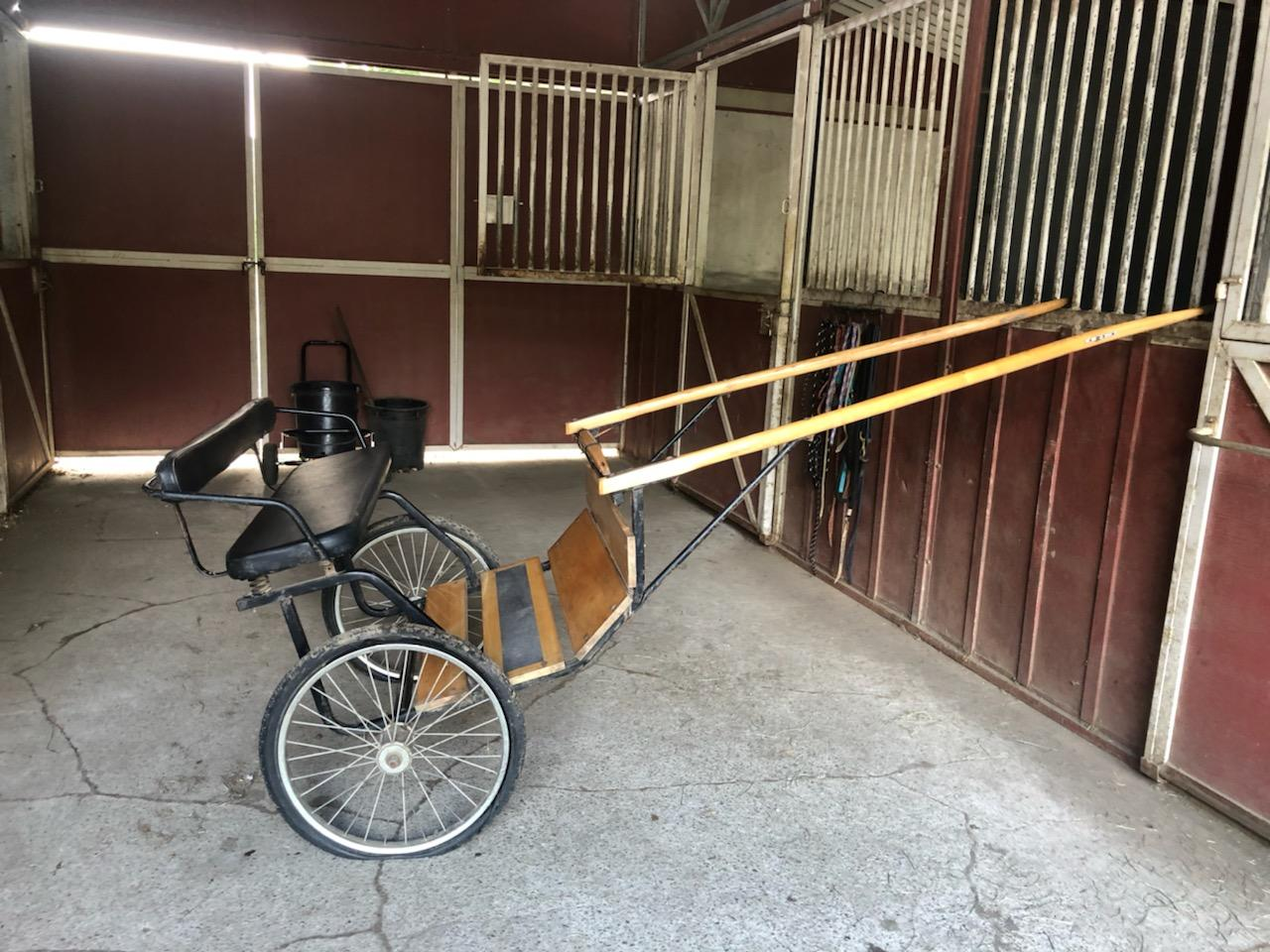 Tack & Supplies: Driving Equipment For Sale-Classified Ads-Bay Area