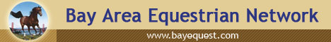 Bay Area Equestrian Network - logo