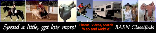 BAEN classified ads - horses for sale, tack, saddles, trailers and more!