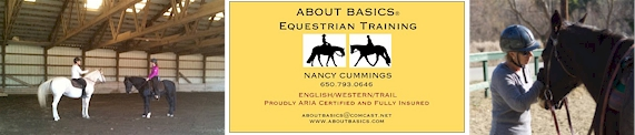 About Basics Equestrian Training