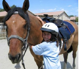 Bay Area Equestrian Network Victory Ranch