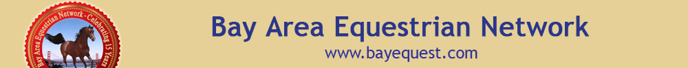 Bay Area Equestrian Network Suggested Items For Equine