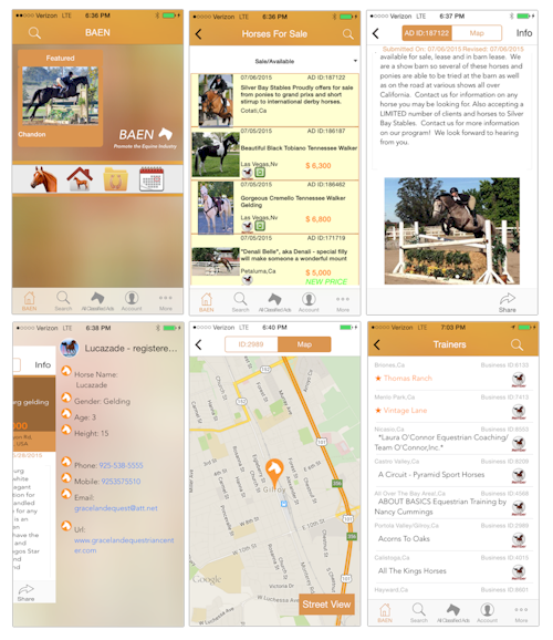 Bay Area Equestrian Network Native App For Iphone And