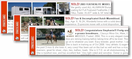 Bay Area Equestrian Network Sold Selling Tips For A
